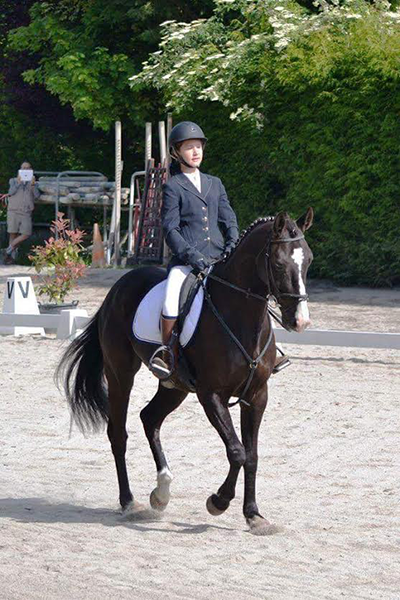 cours equitation dressage. Black Bedroom Furniture Sets. Home Design Ideas