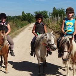 centre equestre Concours vauvert